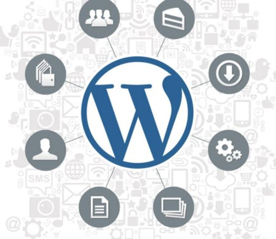 Learn Website Designing on WordPress